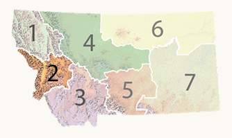 Montana map with region 2